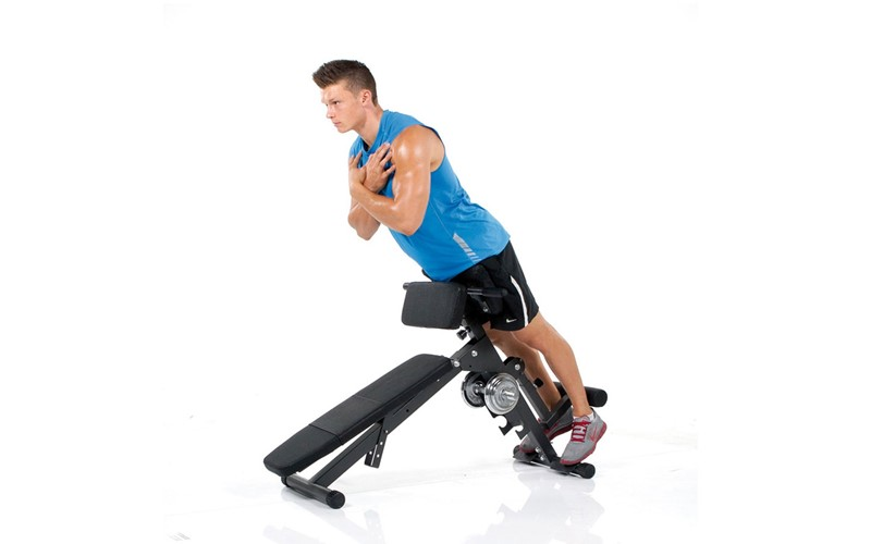 AB & Back Trainer